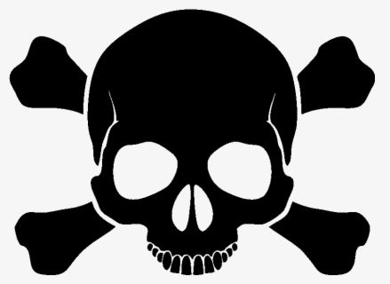 Free Skull Clip Art with No Background.