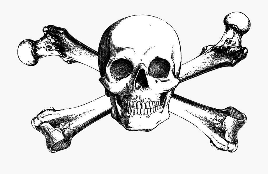 And Bones Drawing Skull Crossbones Free Download Png.