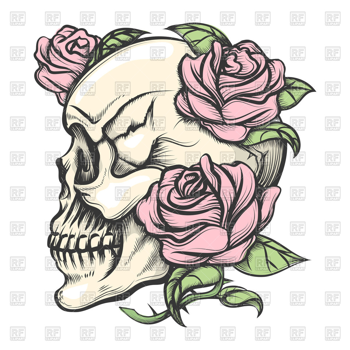 Human skull with roses drawn in tattoo style Vector Image #105236.