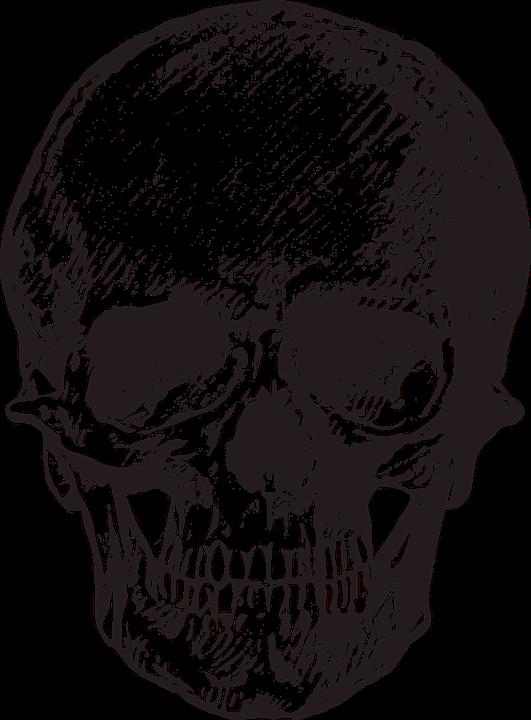 Skull Art Png Vector, Clipart, PSD.