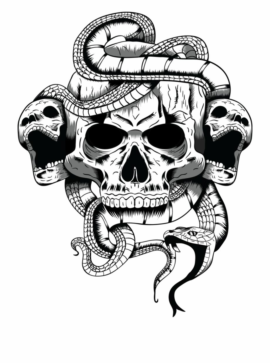 Skull Art Png.