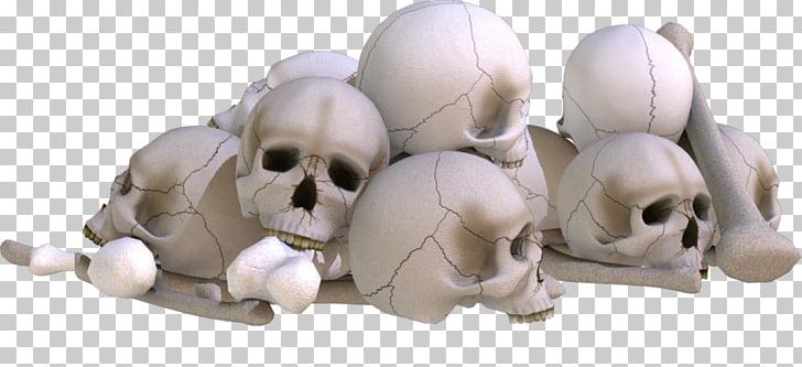 Skull editing PicsArt Photo Studio, skull PNG clipart.