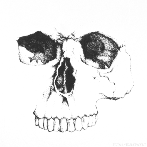 FreeToEdit white skull face blackandwhite clipart png.