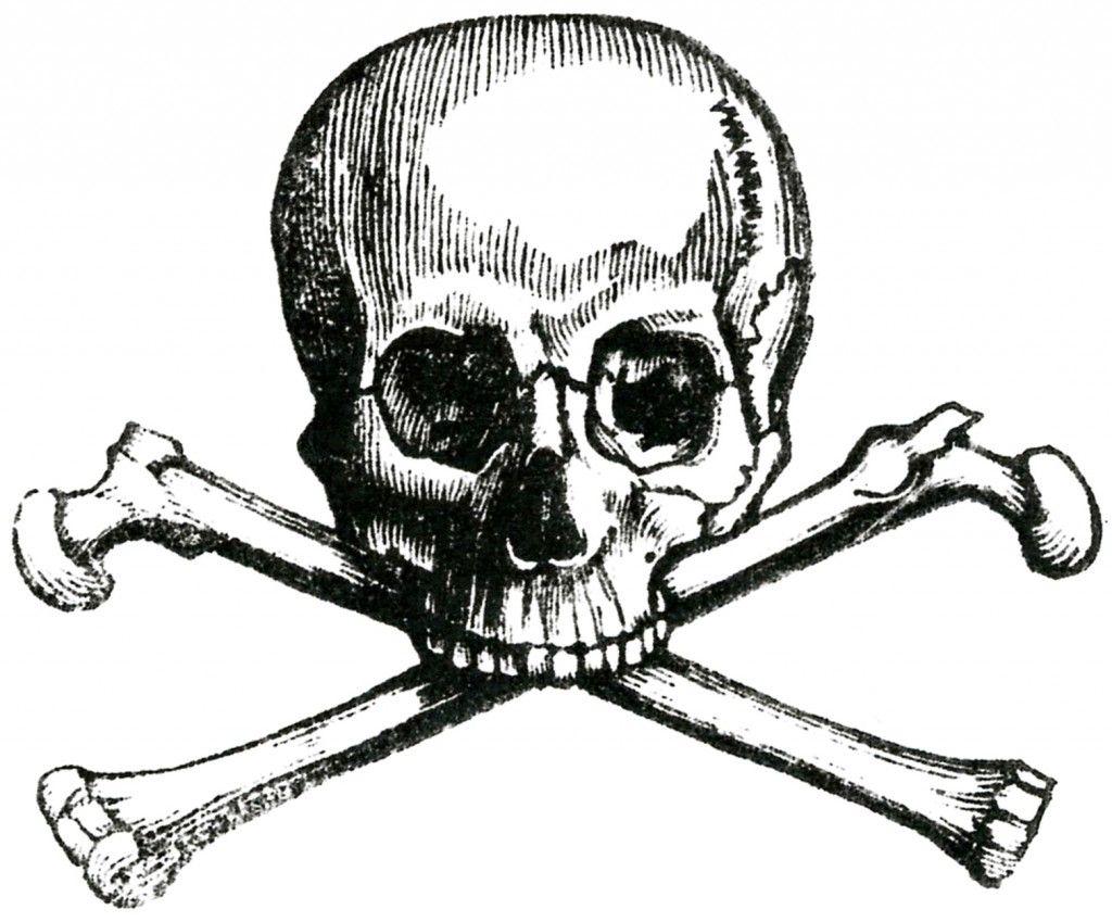 6 Skull Images.