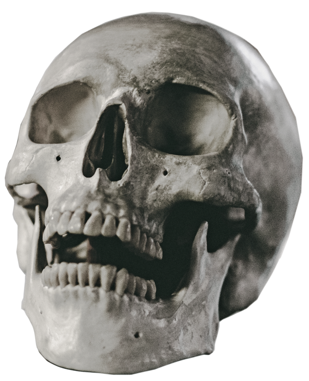 Halloween Skull PNG Background Image.