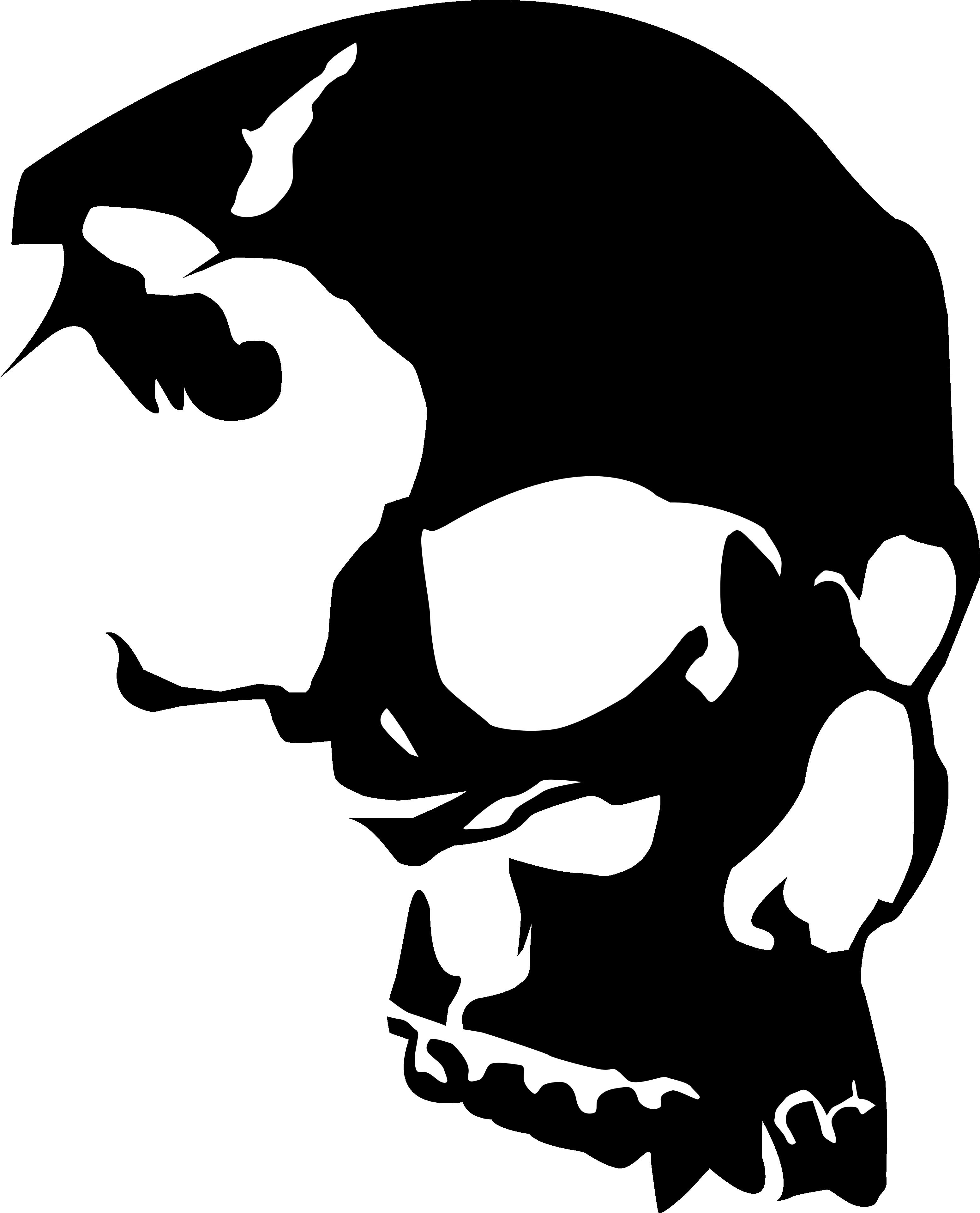 Vector Skull.
