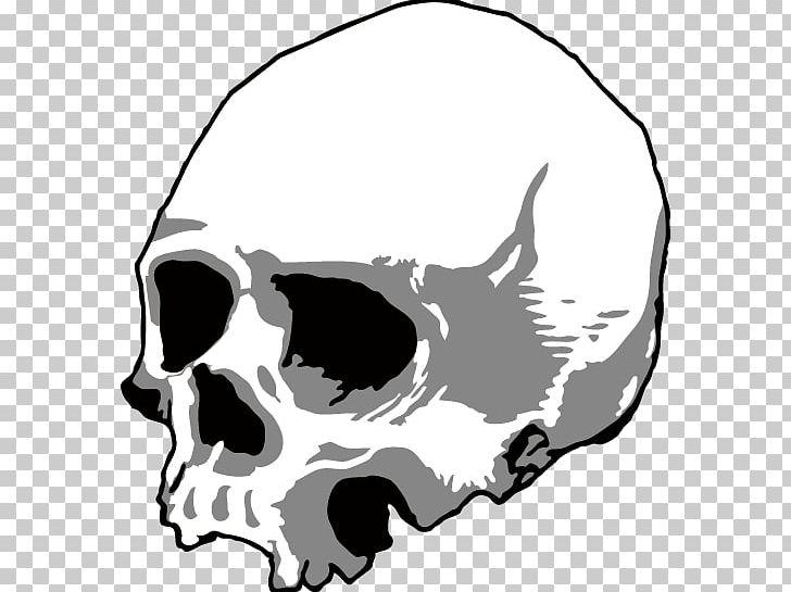 Skull Silhouette Head U9ab7u9ac5 PNG, Clipart, Adobe.