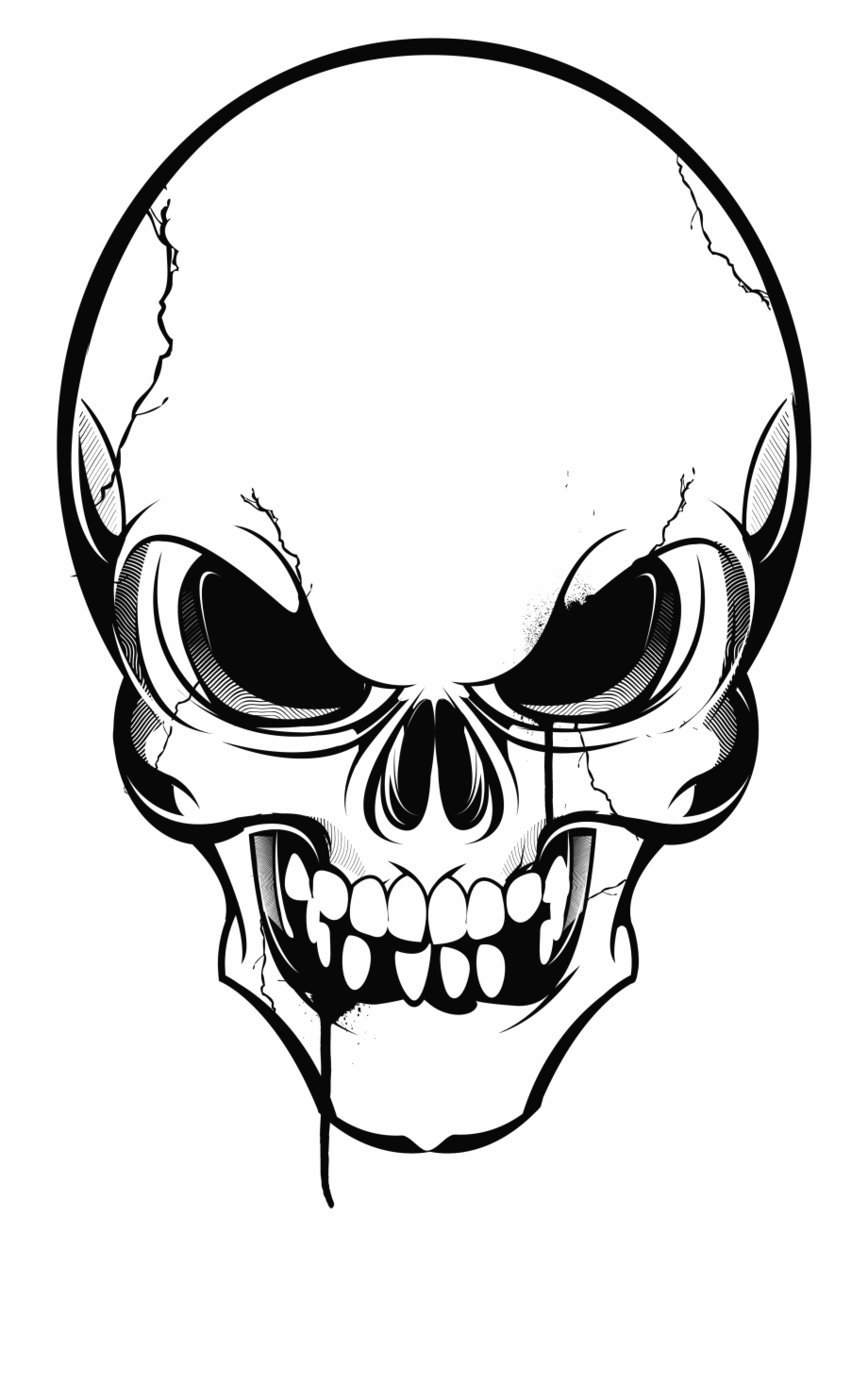 Us Drawing Skull Transparent Clipart Free Download.