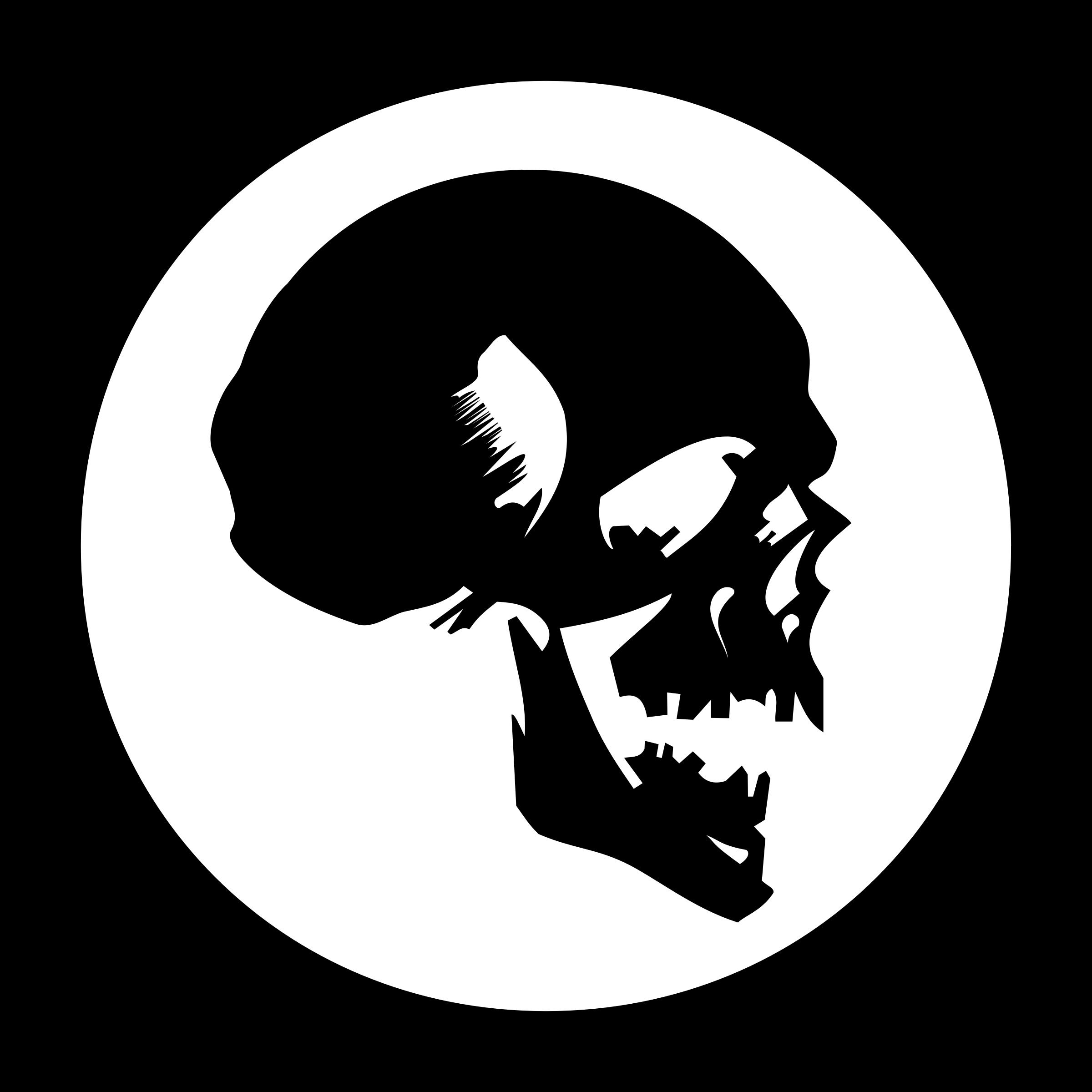 Skullcandy Logo Png Transparent Skullcandy Logo Png.