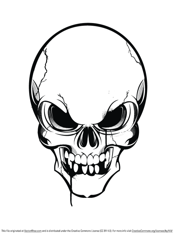 Skull Vector.