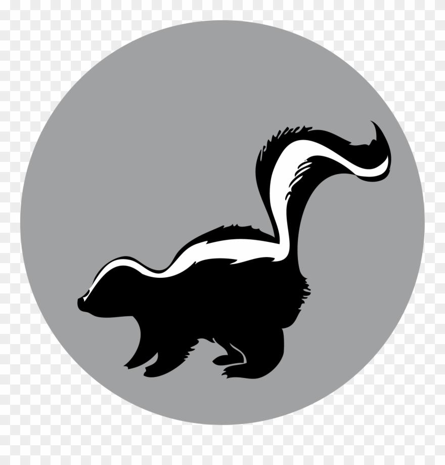 Raccoon American Mink Duck.