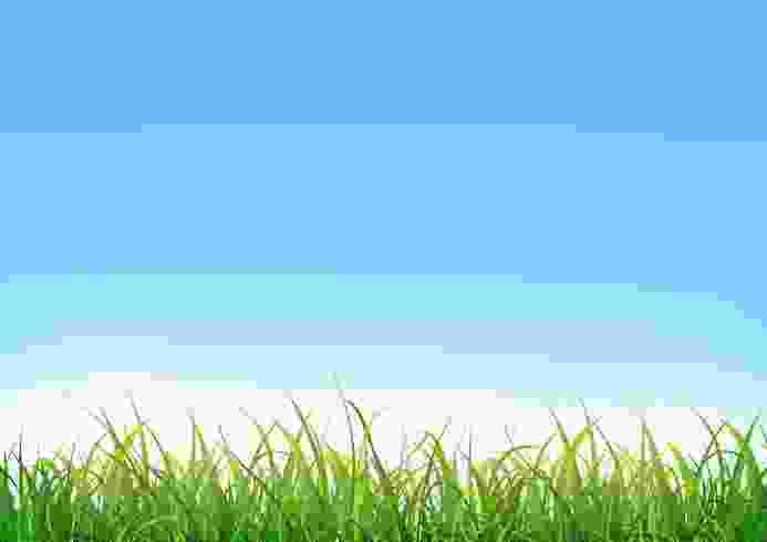 Cliparts Club: Sky And Grass Clipart No Background.