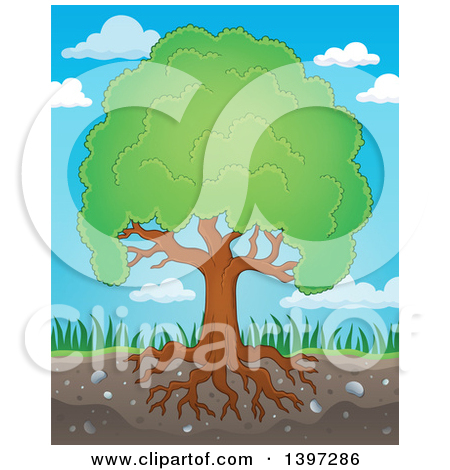 Royalty Free Stock Illustrations of Plants by visekart Page 1.