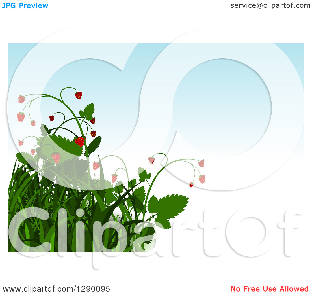 Clipart of a Background of Grasses and Strawberry Plants over.