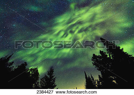 Picture of Aurora Borealis and milky way visible in the sky, Mont.