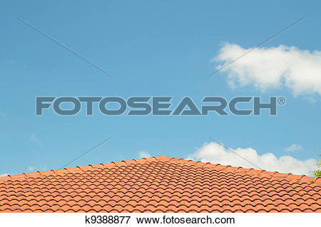 Picture of photo of a concrete tiled roof, roofing materials.