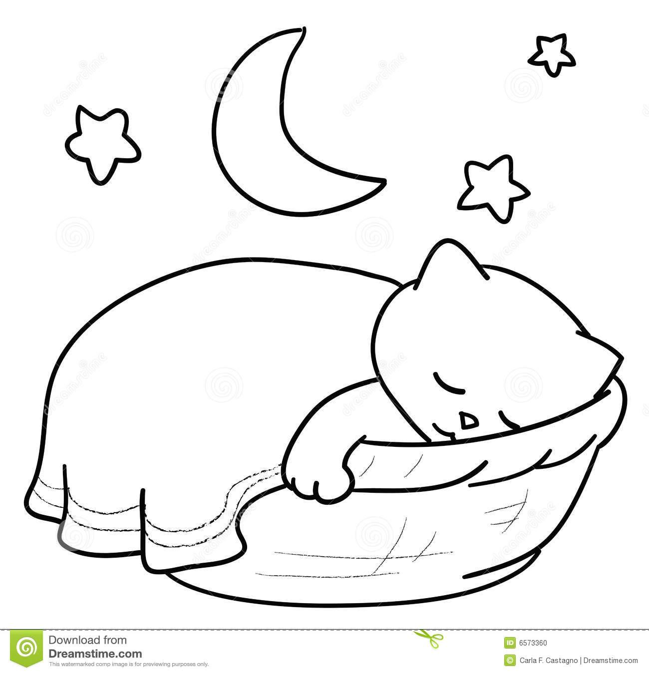 Sleeping Cat Stock Photo.