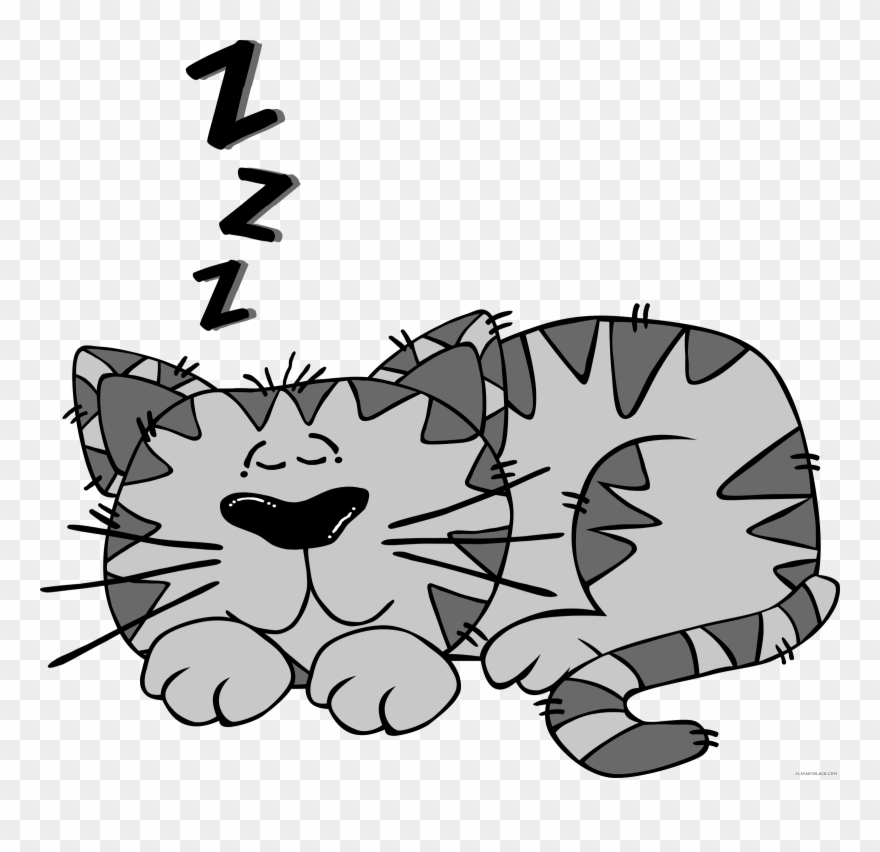 Cartoon Cat Animal Free Black White Clipart Images.