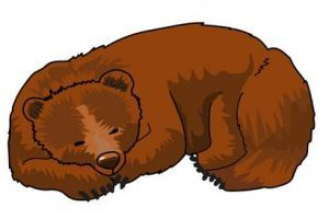 Sleeping bear clipart 2 » Clipart Portal.
