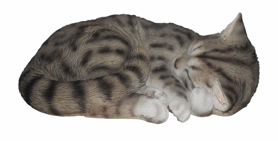 Sleeping Cat Tabby Real Life Resin Ornament By Vivid.