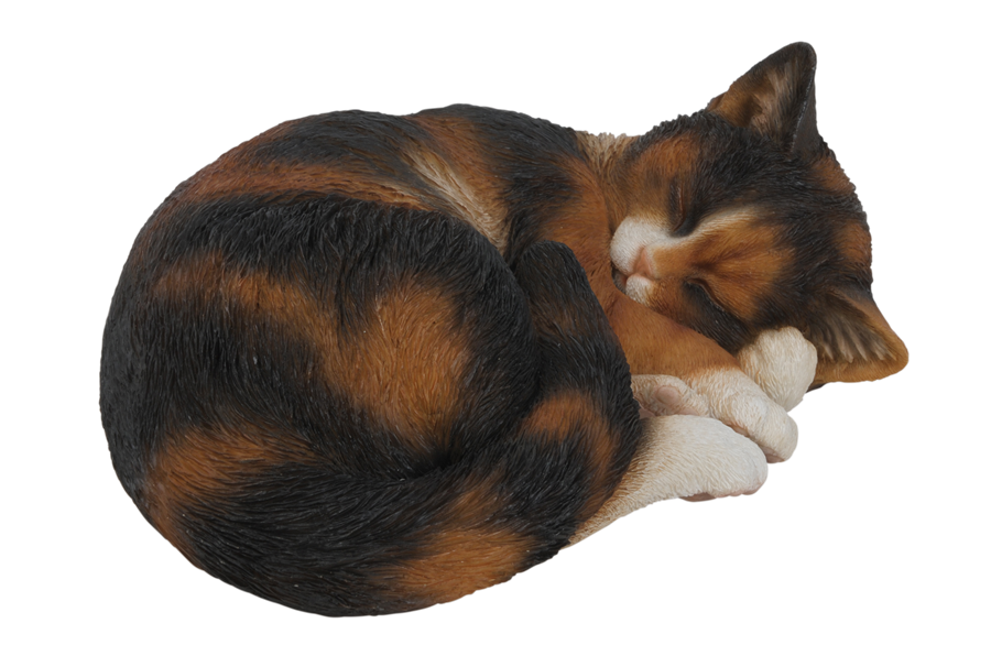 Sleeping cat png clipart images gallery for free download.