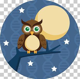 Sleepy Owl PNG Images, Sleepy Owl Clipart Free Download.