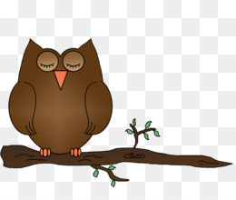 Night Owl PNG.