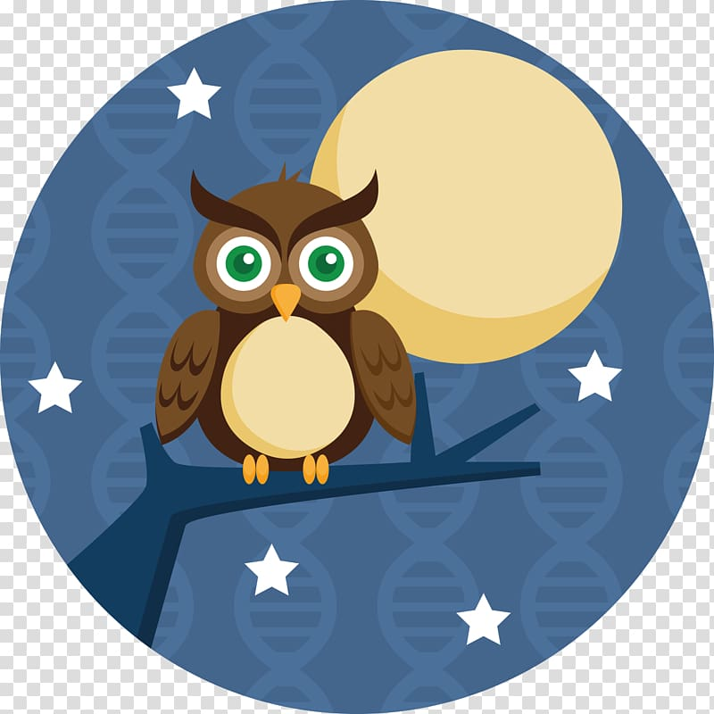 Owl Bird, sleepy owl transparent background PNG clipart.