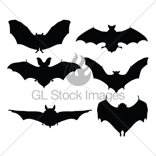 Bats · GL Stock Images.