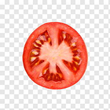 Tomato Slices cutout PNG & clipart images.