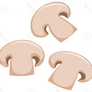 Photostock Vector Three Sliced Mushrooms Primitive Cartoon.