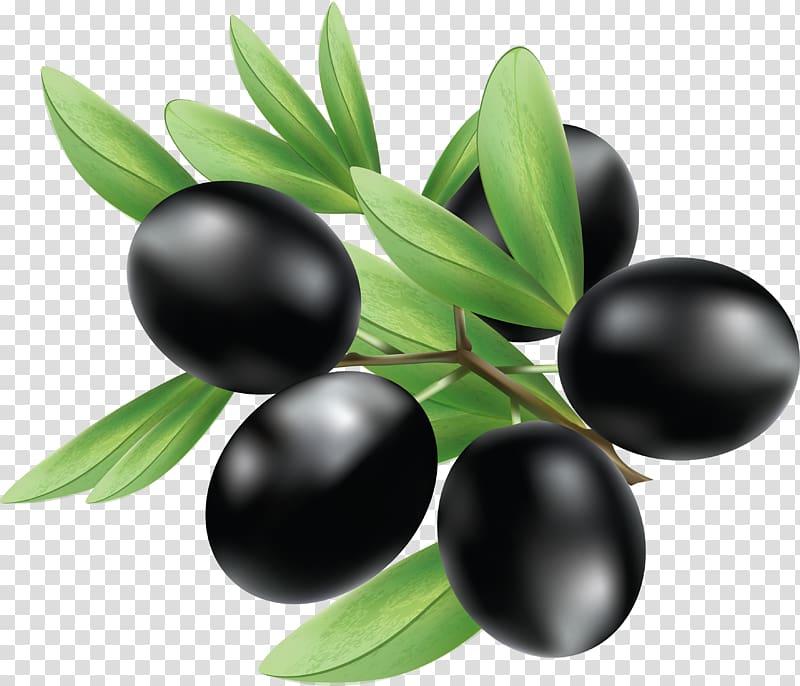 Black fruits, Olive Illustration, Black olives transparent.