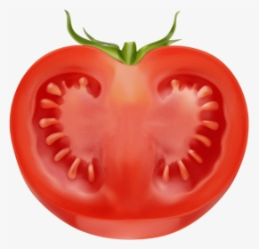 Tomatoes Clipart Sliced Tomato.