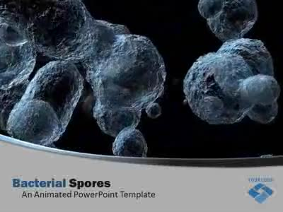 Bacterial Organism Spores.