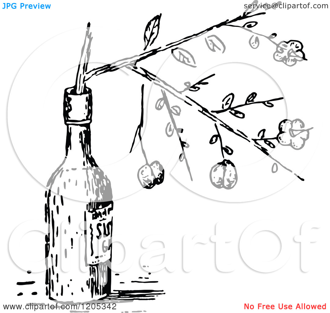 Clipart of a Vintage Black and White Sloe.