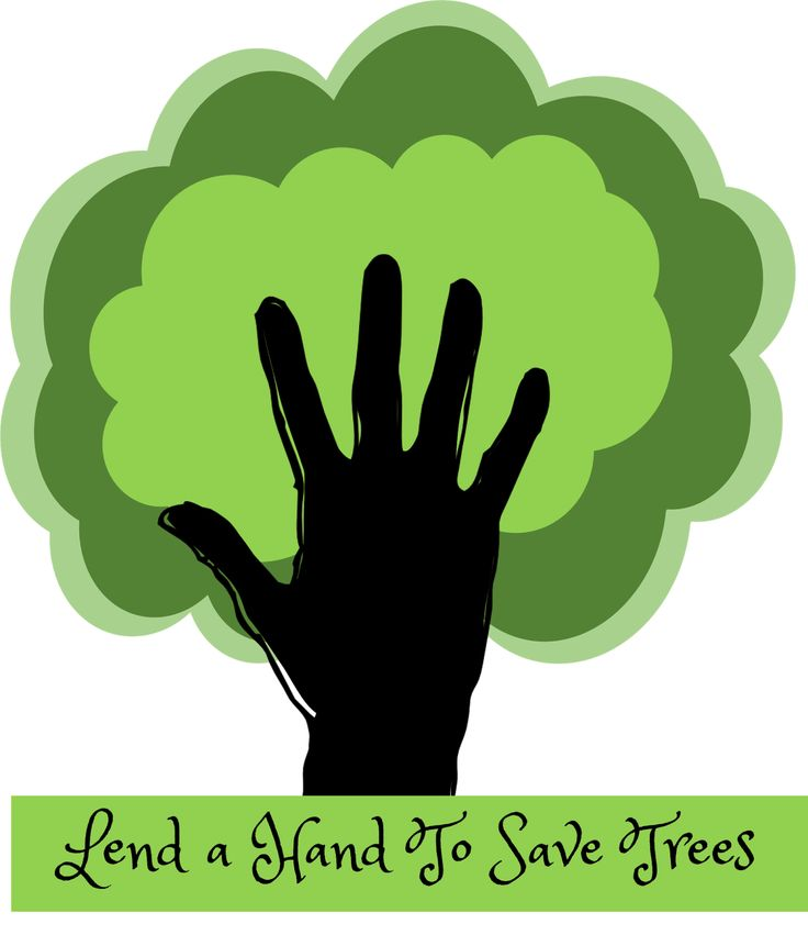 1000+ ideas about Save Trees Slogans on Pinterest.