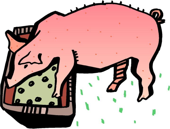 Pig slop clipart.