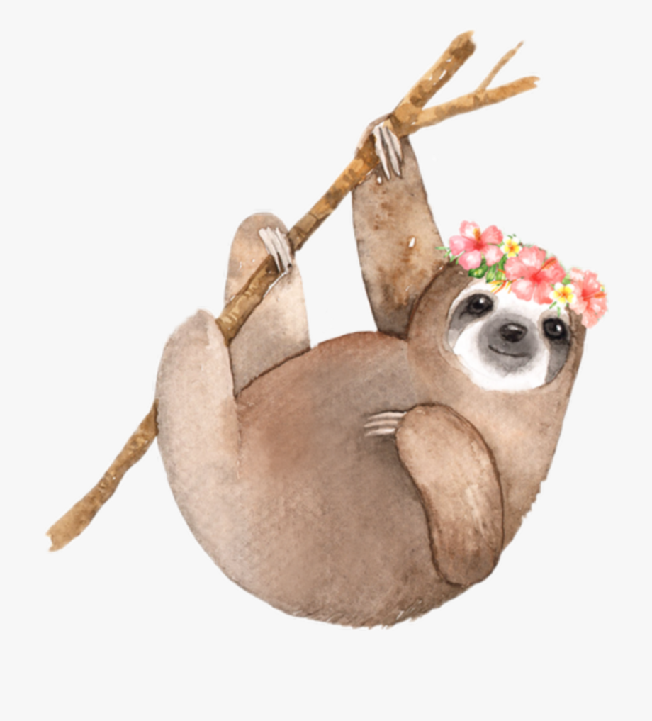 Sloth Clipart Watercolor.
