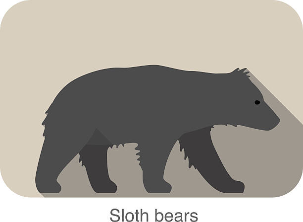 Silhouette Of Sloth Bear Clip Art, Vector Images & Illustrations.