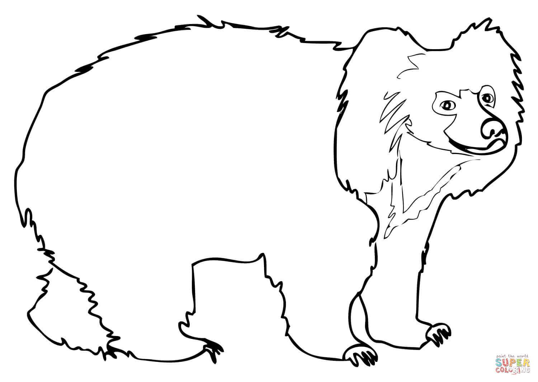 Sloth Bear coloring page.