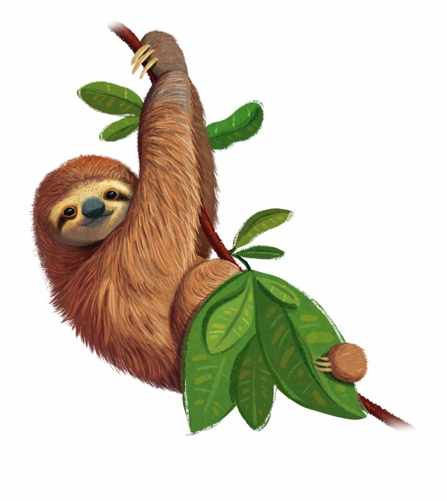 Free Sloth Transparent Background, Download Free Clip Art.
