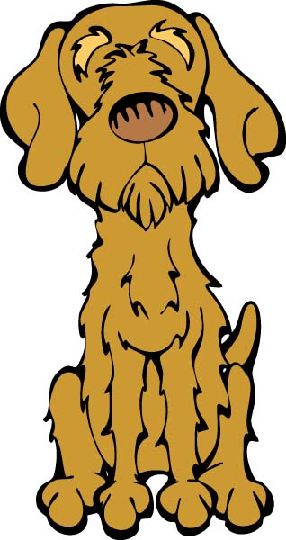 Wirehaired Vizsla http://www.thedogtable.com/daily.