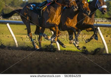 Horse Racing Jockey Stock Photos, Royalty.