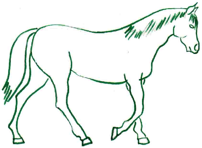 Horse Drawing Easy.