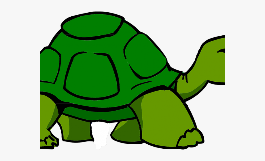 slow turtle clipart 10 free Cliparts | Download images on ...