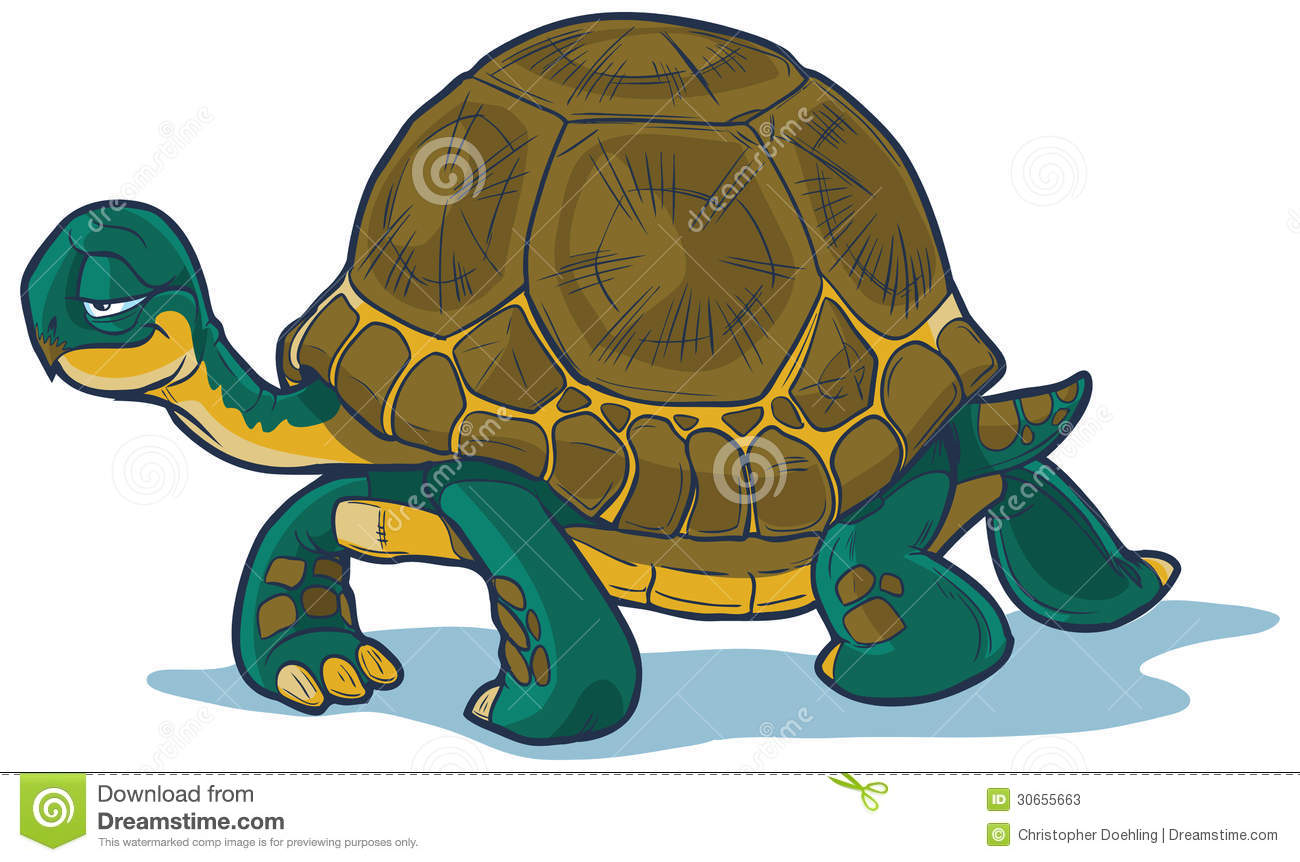 Slow Tortoise Cartoon.