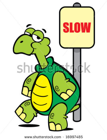 Showing post & media for Slow down turtle cartoon.
