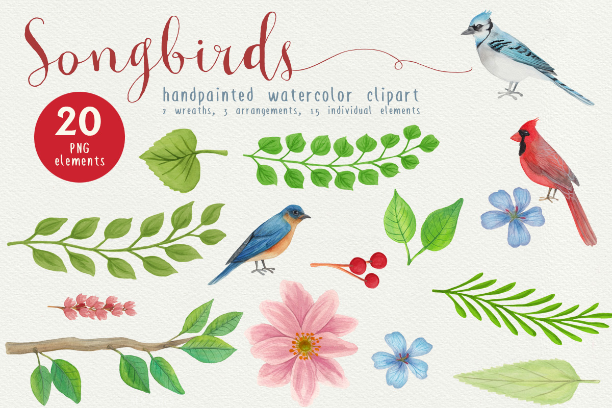 Song Bird Watercolor Clipart by SLS Lines.