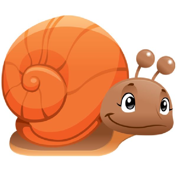1000+ images about Snails And Slugs on Pinterest.