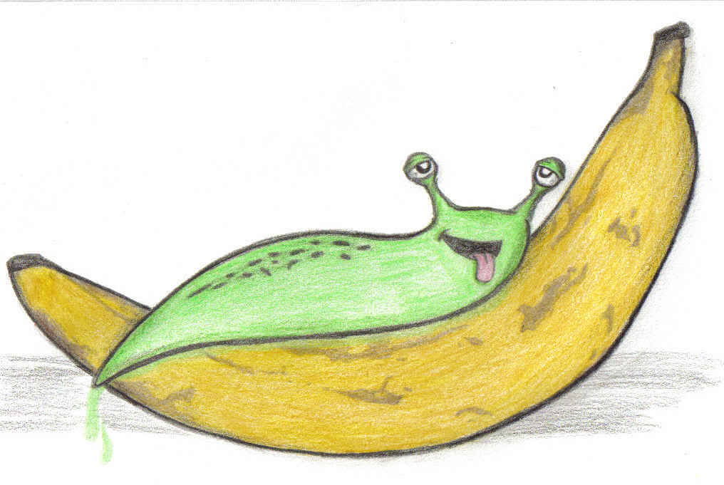 Free Slug Cliparts, Download Free Clip Art, Free Clip Art on.